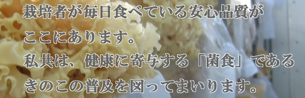 安心で美味しいきのこを。沼田きのこ園はきのこの普及に努めます。